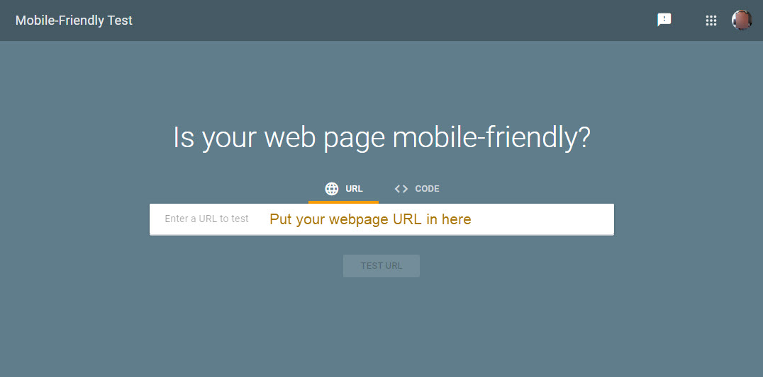 Screenshot of Google mobile test tool
