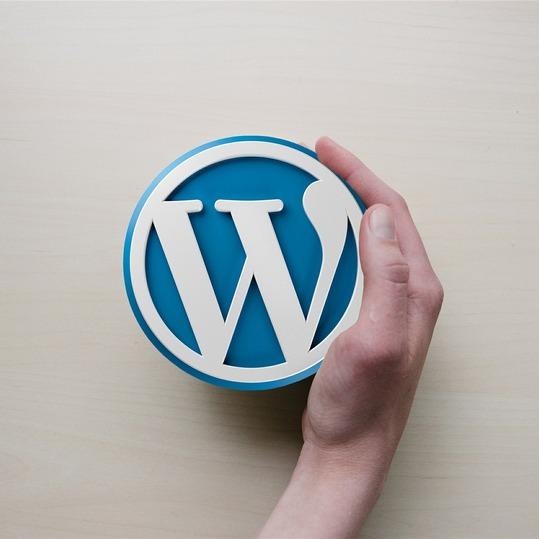 a hand cupped around the WordPress logo